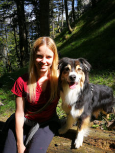 kostenlose Beratung - Hundeschule Pocking