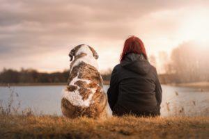 Hundeschule Pfoten Academy, Philosophie