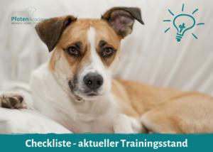 Checkliste - aktueller Trainingsstand