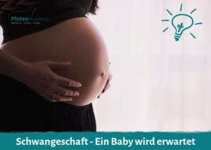 Schwangeschaft - Ein Baby wird erwartet