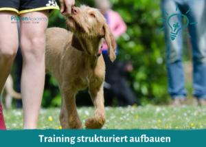 Training strukturiert aufbauen