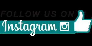 Hundeschule Pfoten Academy Instagram